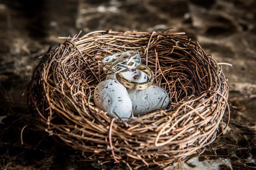 rings-in-birdsnest-renaissance-wedding