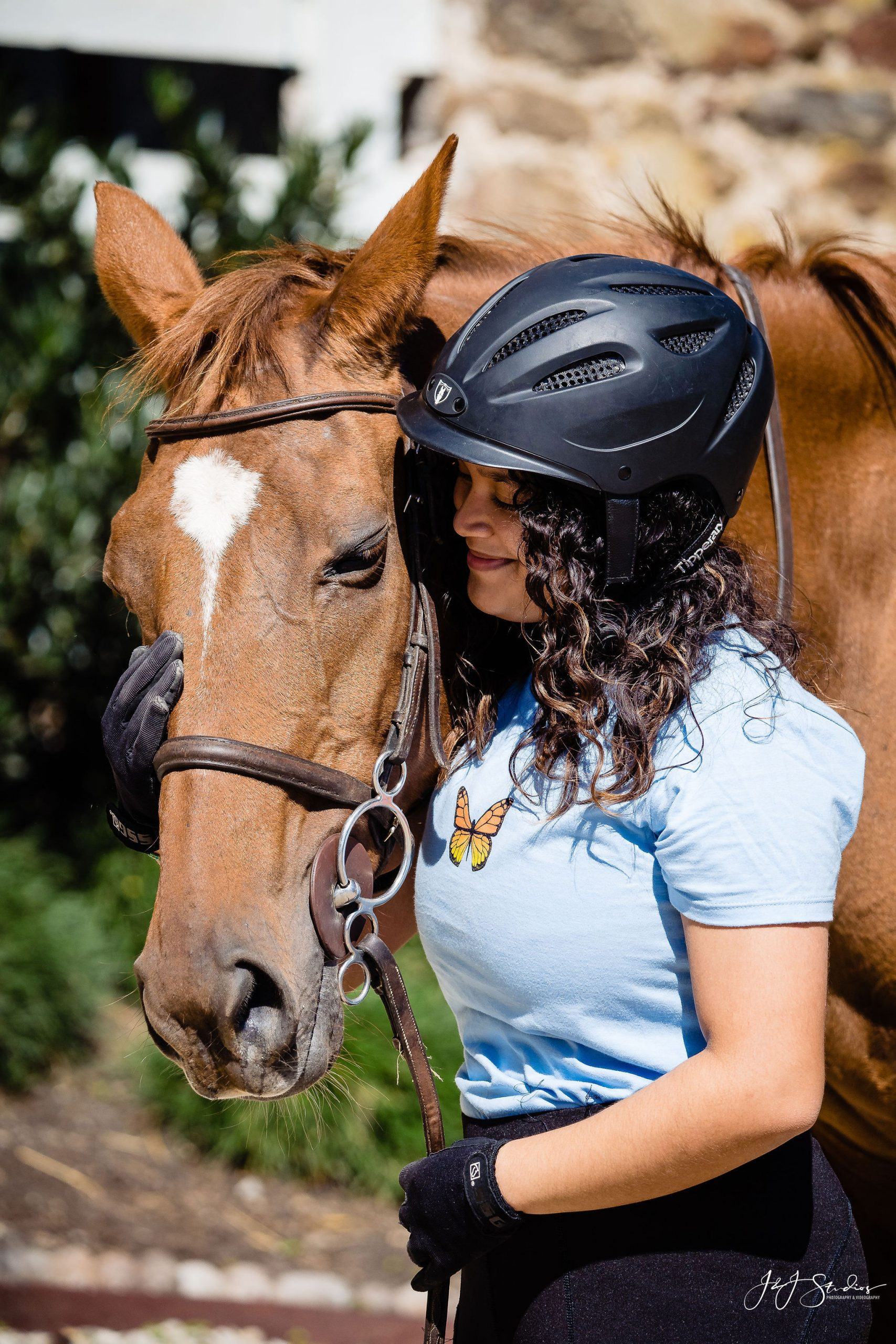 carismeldi nuzzle horse