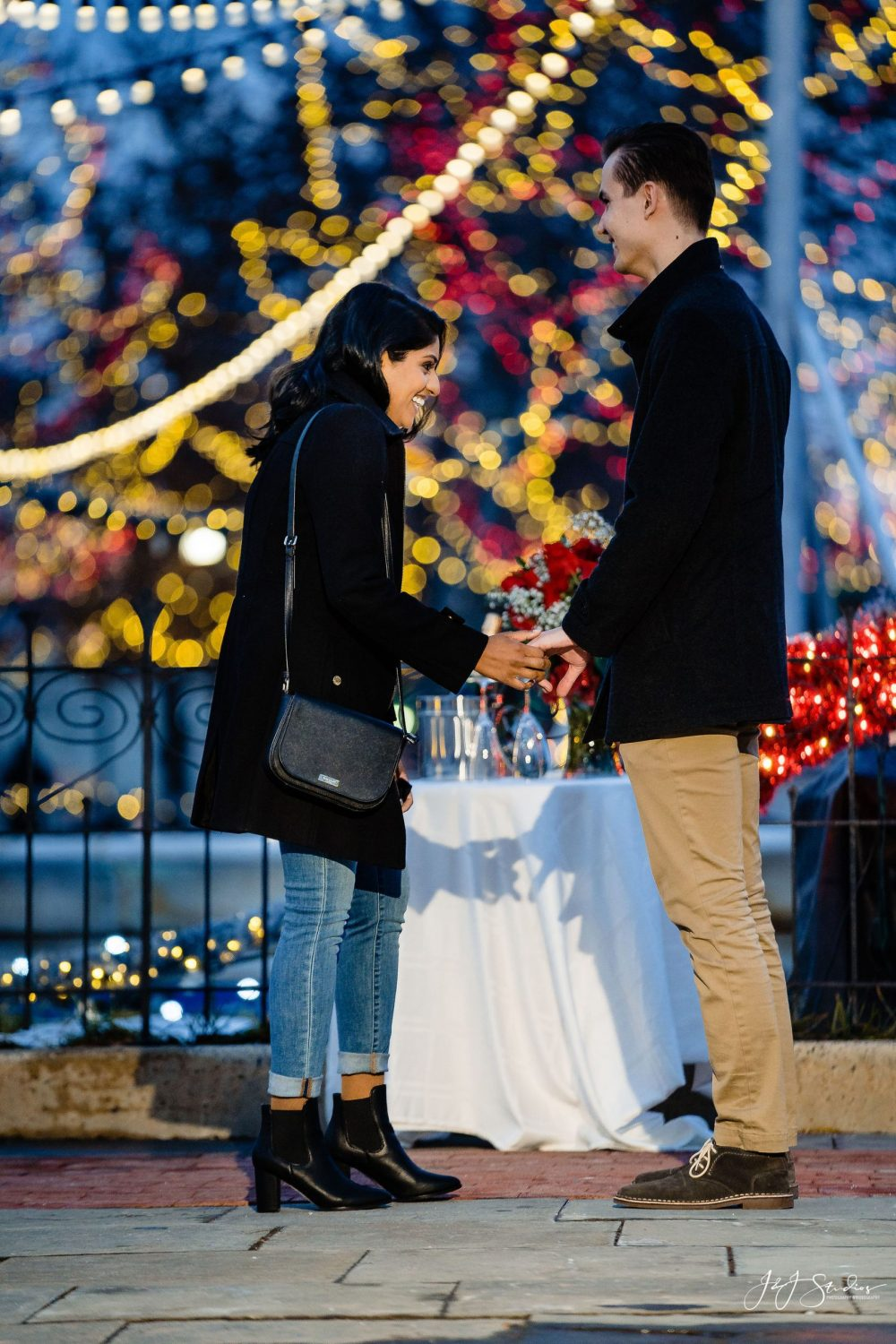Nive and TarasFranklin Square Surprise Proposal