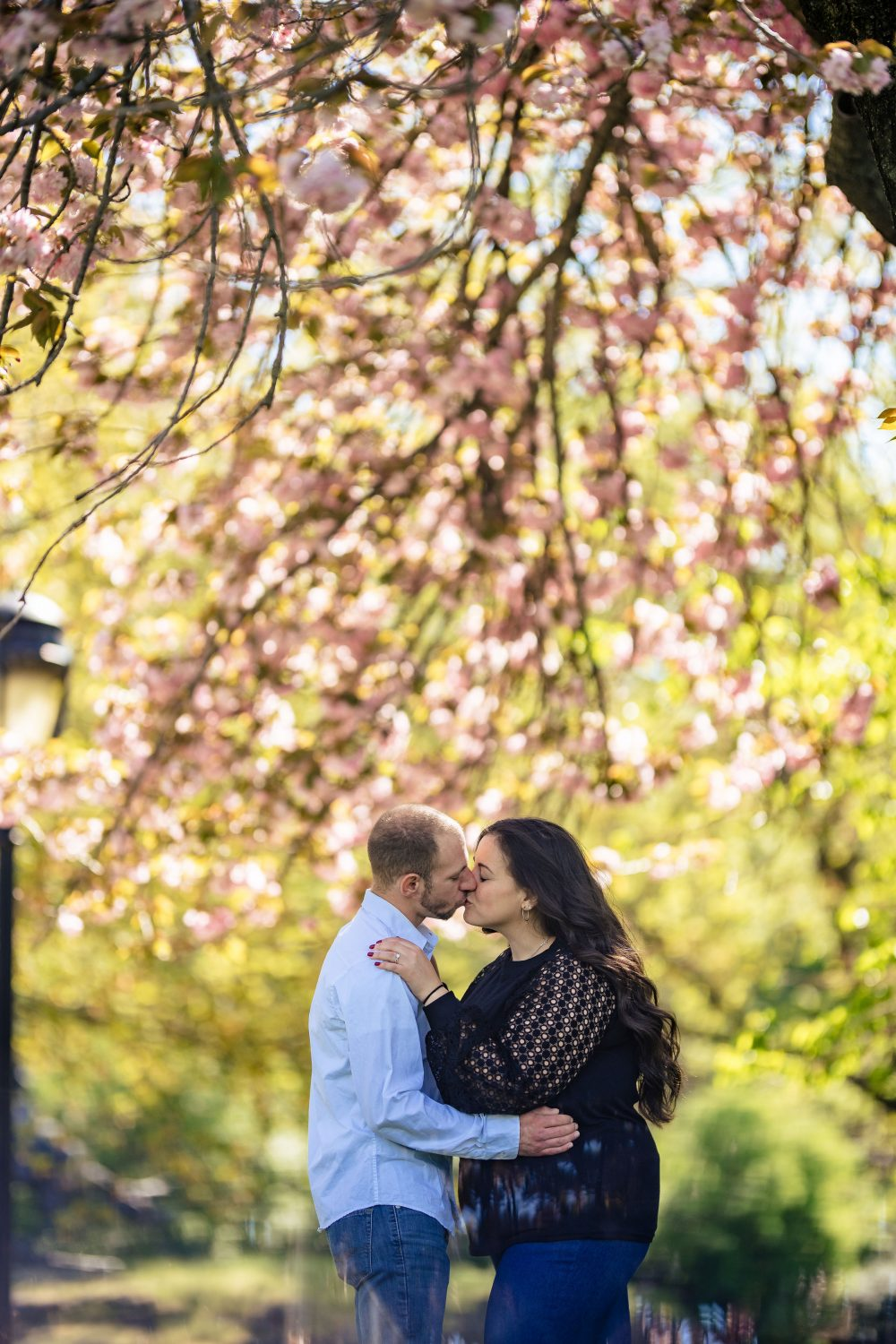 making out under cherry tree Kelly Drive Cherry Blossom Engagement Session